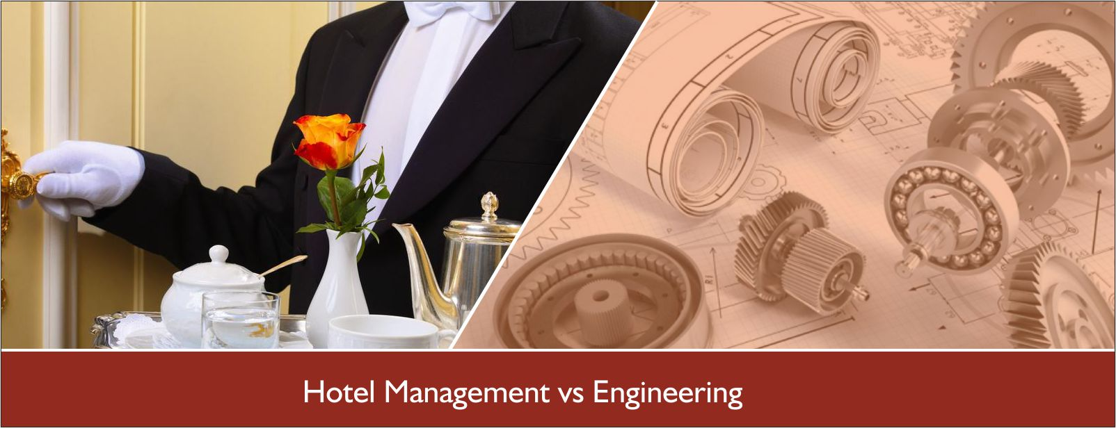 ENGINEERING  VS  HOTEL MANAGEMENT